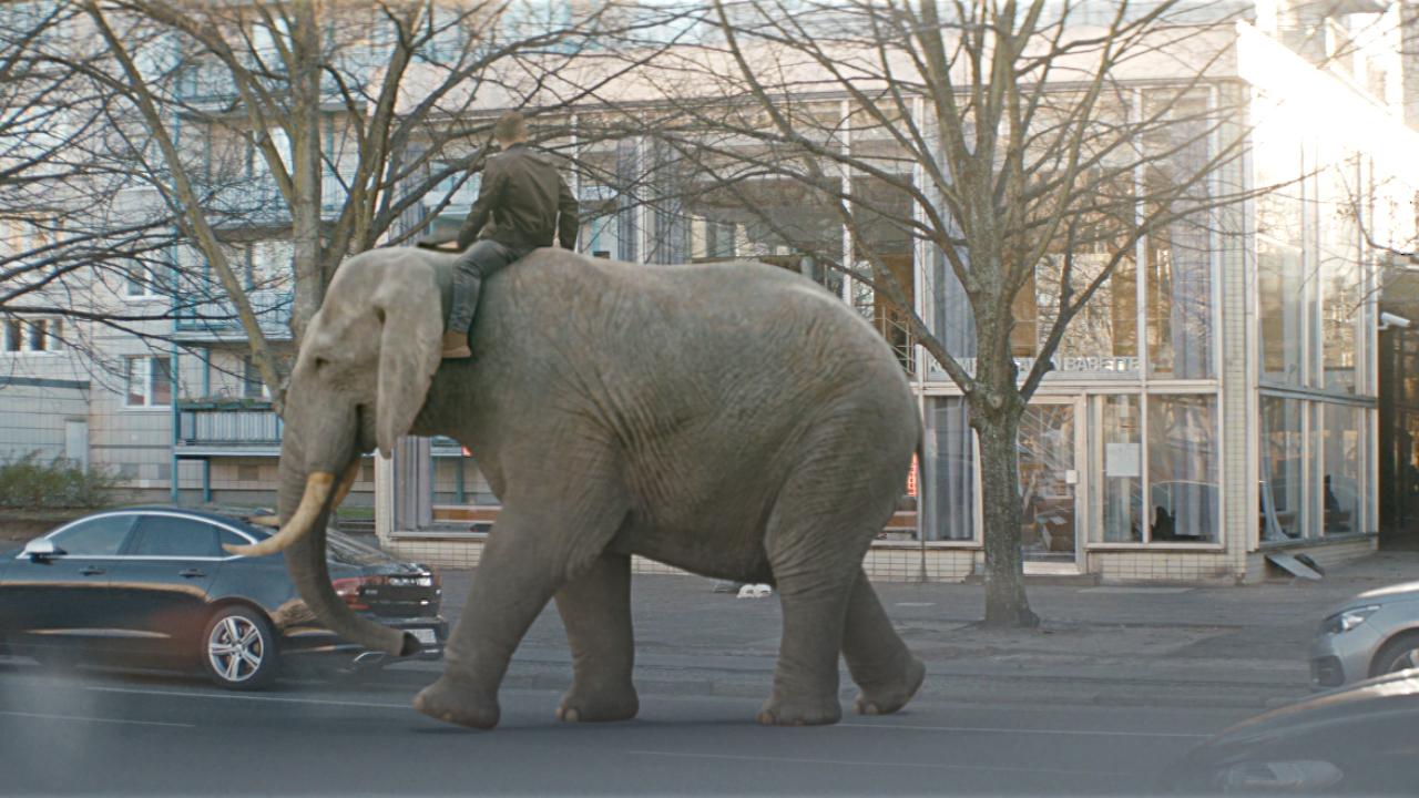 XTip – Lukas Podolski rides the elephant